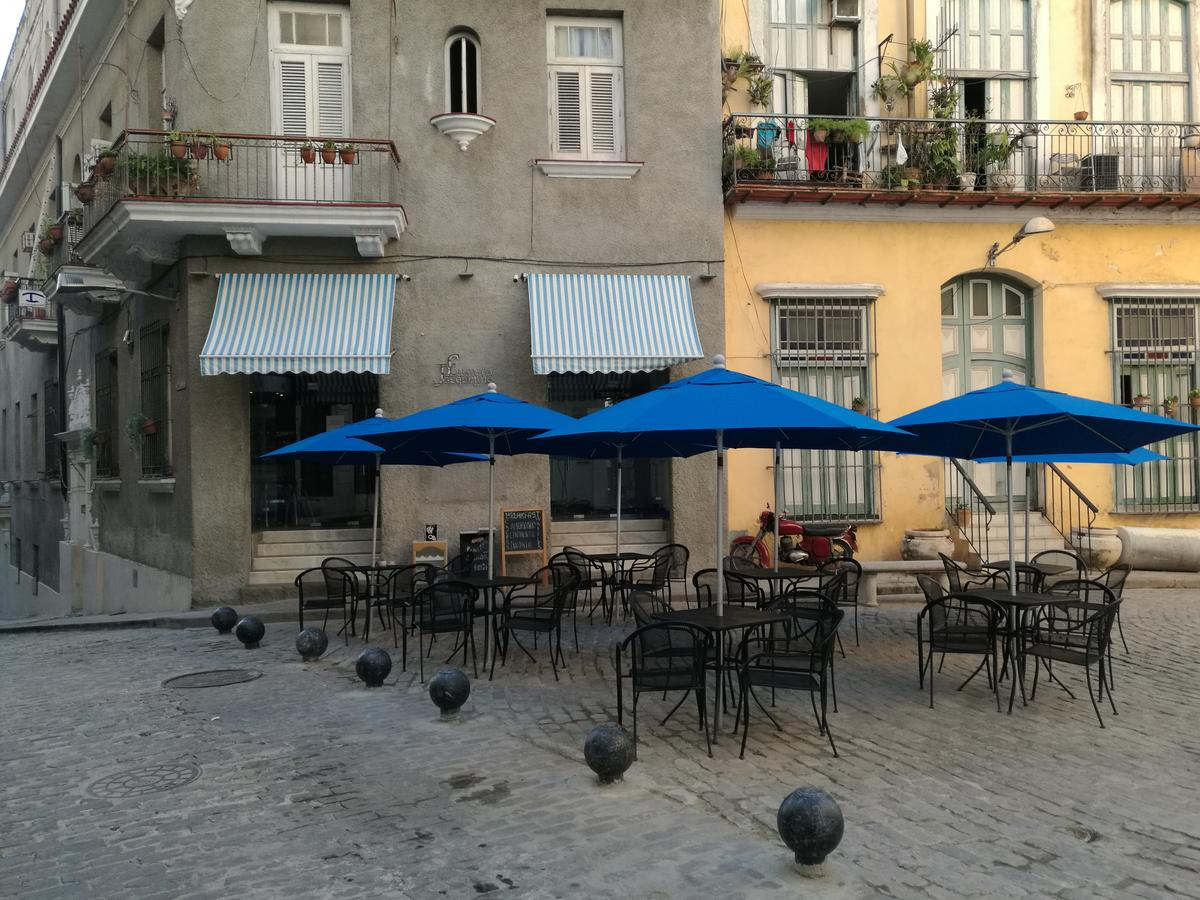 Software Solution for  , restaurant, bar, cafe, boutique - Havana